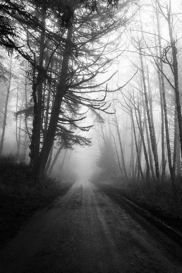 Foggy Passage by Steven Clark