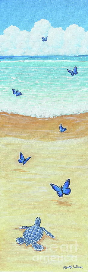 Follow The Butterflies by Elisabeth Sullivan
