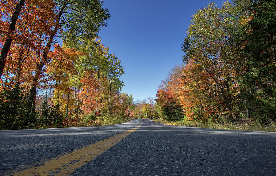 Following the Colours - Apsley - Ontario, Canada by Spencer Bush