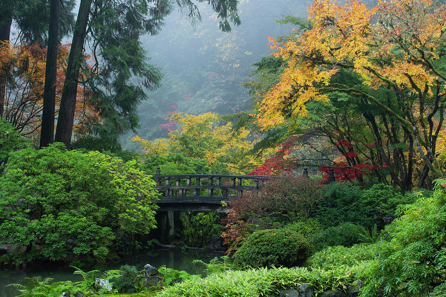 Footbridge In Japanese Garden by Panoramic Images