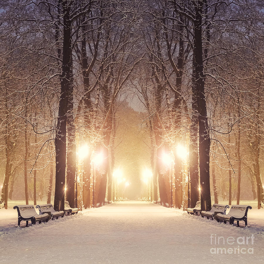 Year Photograph - Footpath In A Fabulous Winter City Park by Beerlogoff