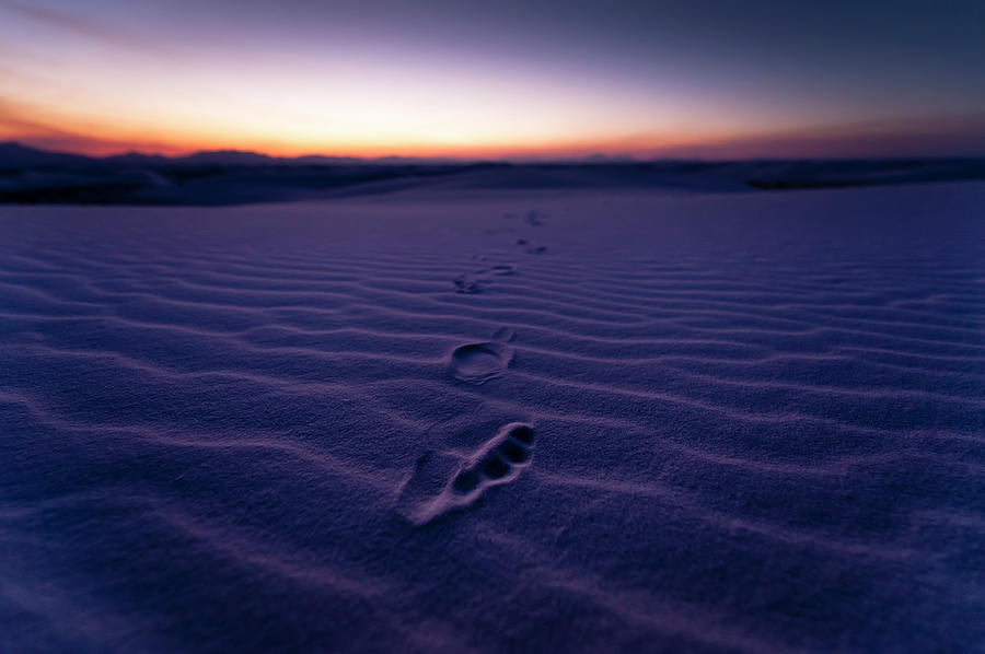 Footprint On Dunes Photograph by Son Gallery - Wilson Lee