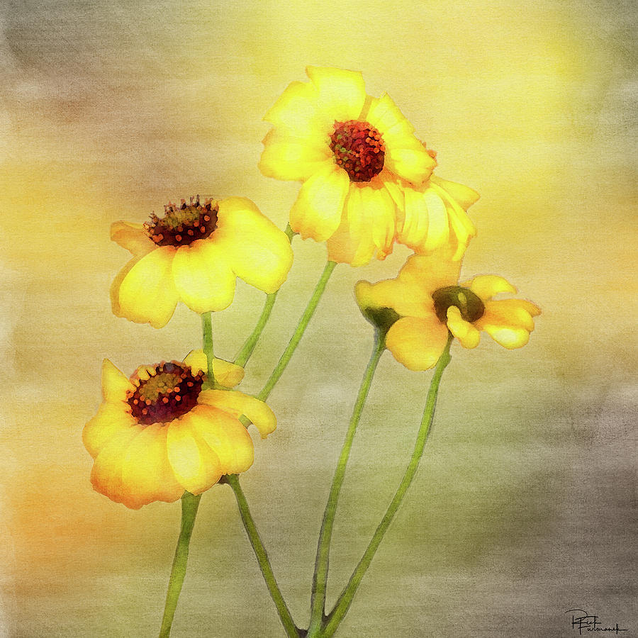 For Everything There is a Season in Digital Watercolor by Rick Furmanek
