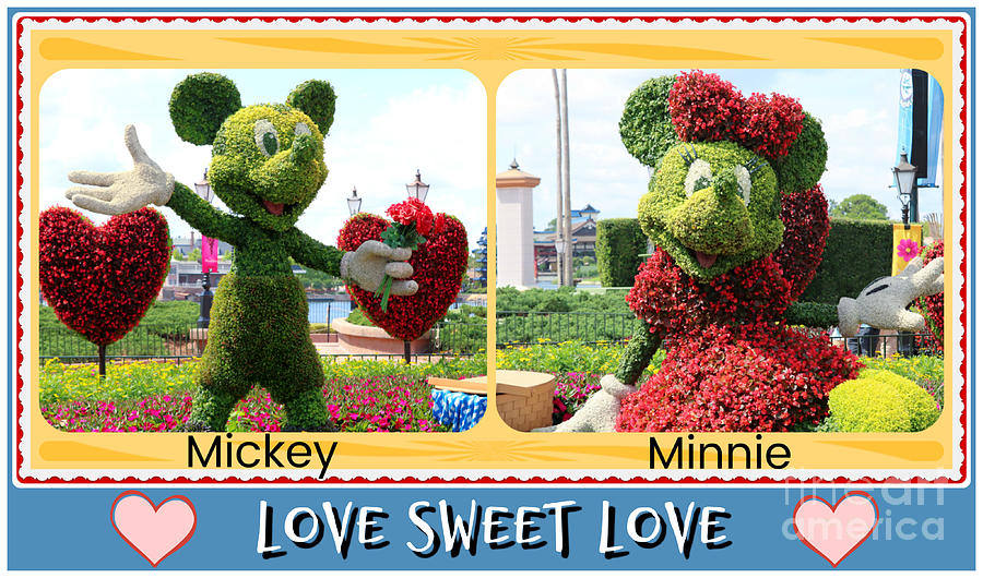 For The Love Of Minnie Photograph