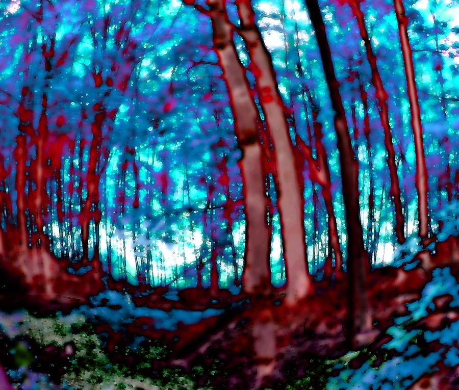 Forest 2040 red and blue by AJP