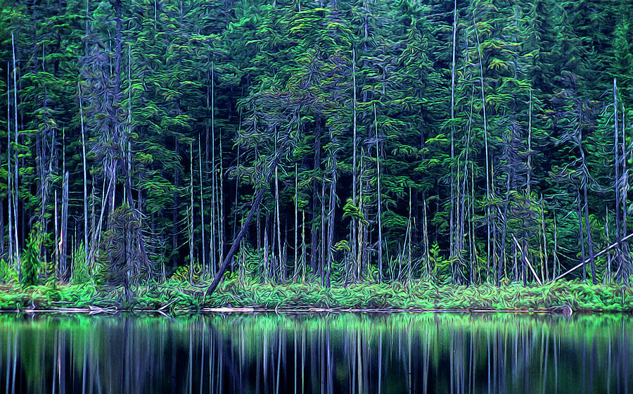 Forest by the Lake by Richard Farrington
