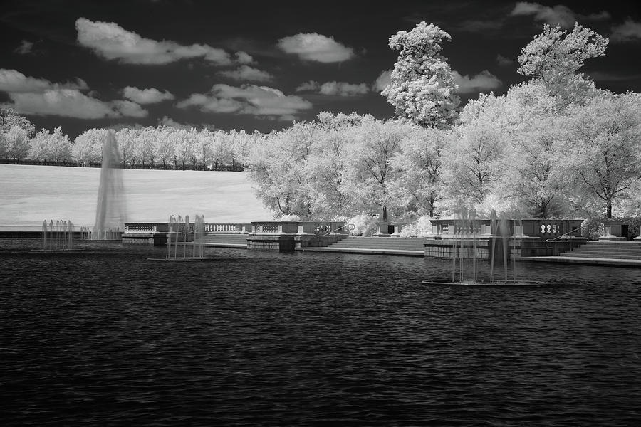 Forest Park in Infrared 1 by Lynda Fowler