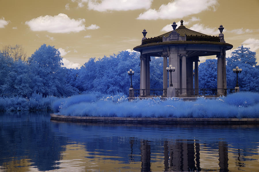 Forest Park in Infrared 4 by Lynda Fowler