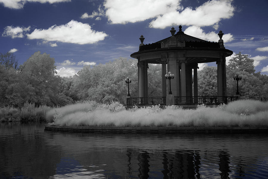 Forest Park in Infrared 5 by Lynda Fowler