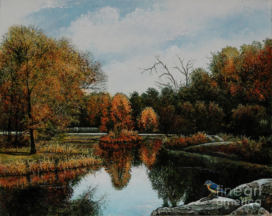 Forest Park Waterways 1 by Michael Frank