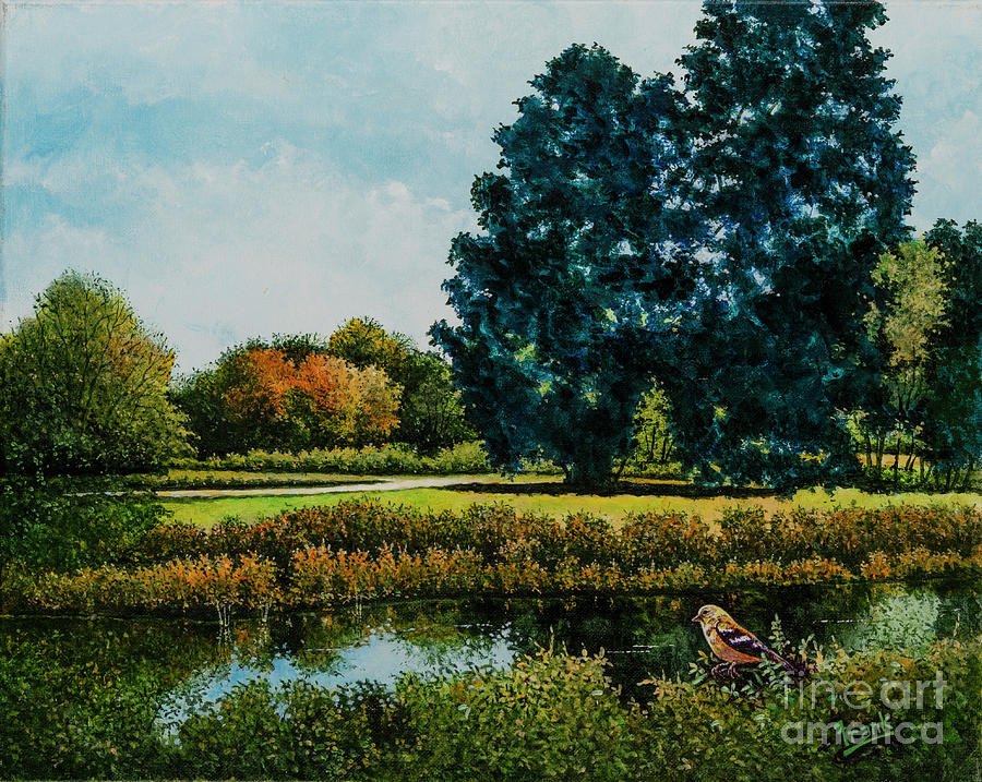 Forest Park Waterways 2 by Michael Frank