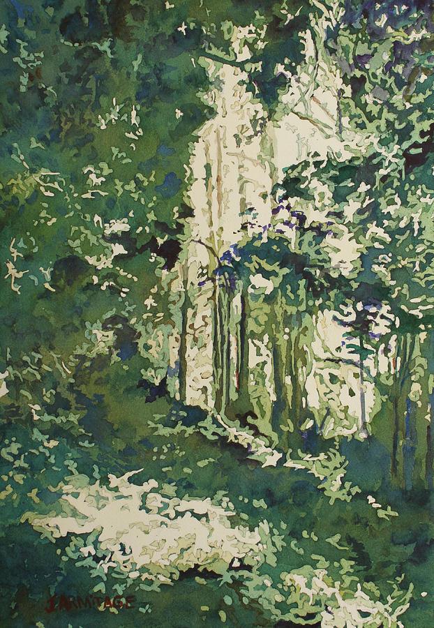 Forest Window by Jenny Armitage