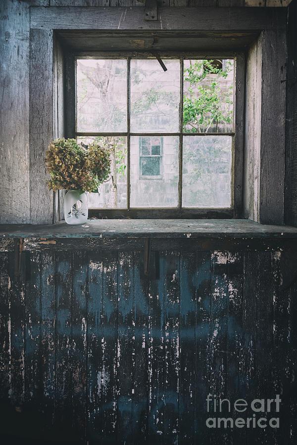 Forgotten by Debra Fedchin