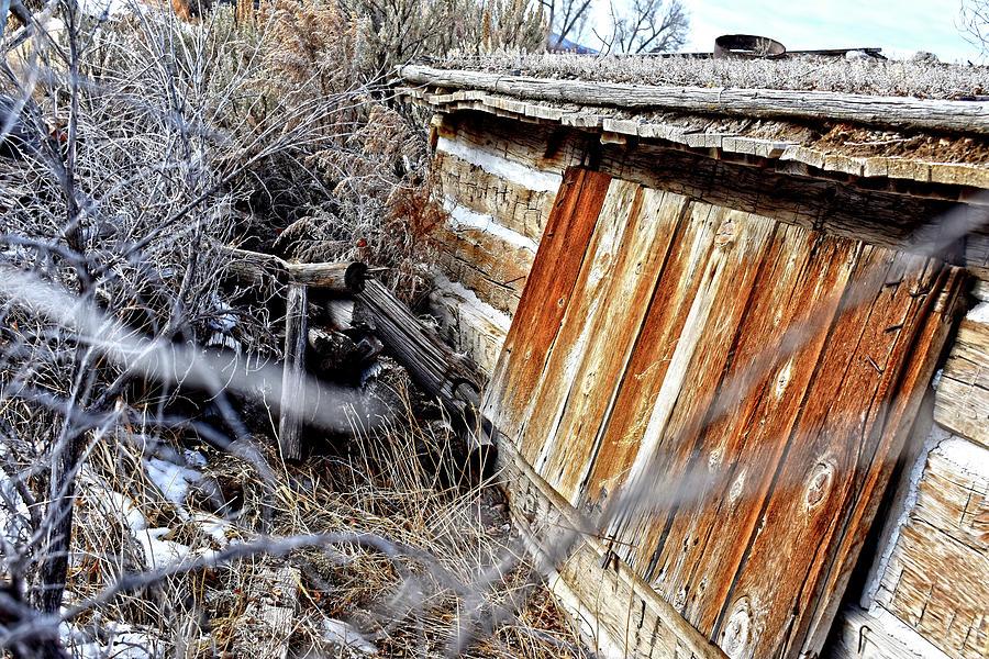 Forgotten Homestead by Jason Bohannon