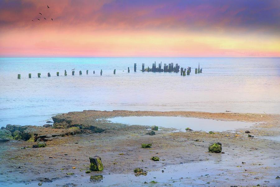 Forgotten Pier by John Rivera