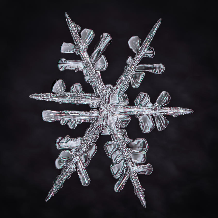 Forked Snowflake by Brian Caldwell