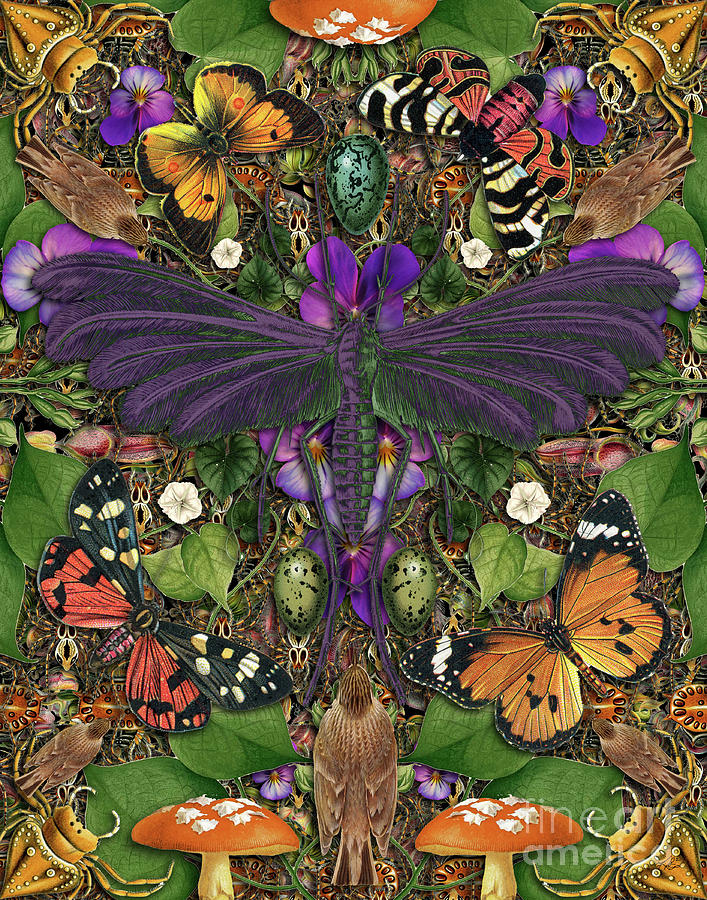 Butterfly Digital Art - Forms of Nature #3 by Kenneth Rougeau