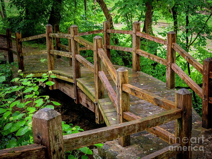 Forrest Bridge by Bob Mintie