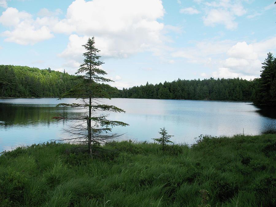 Lake Photograph - Found Lake  by Cheryl Dumoulin