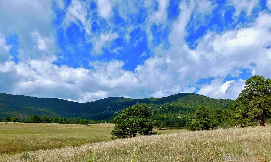Founders Trail by Dan Miller