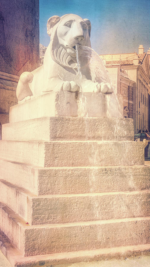Fountain of Lions Rome Italy by Joan Carroll