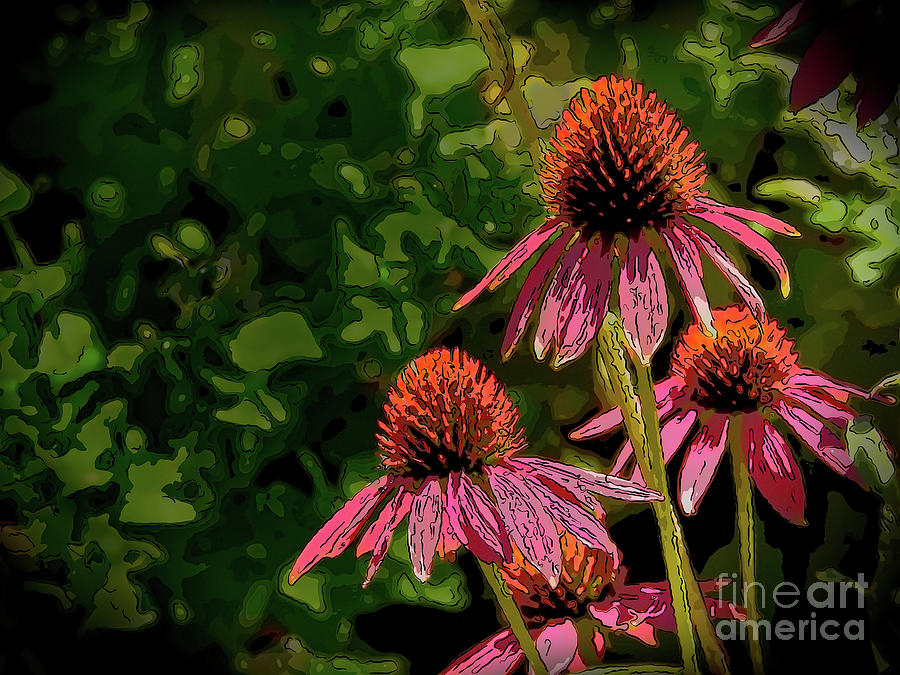 Four Coneflowers by Marty Faulkner