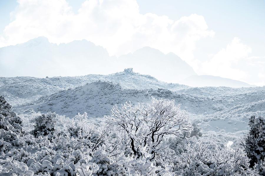Four Peaks Mountain View by Veronika Countryman