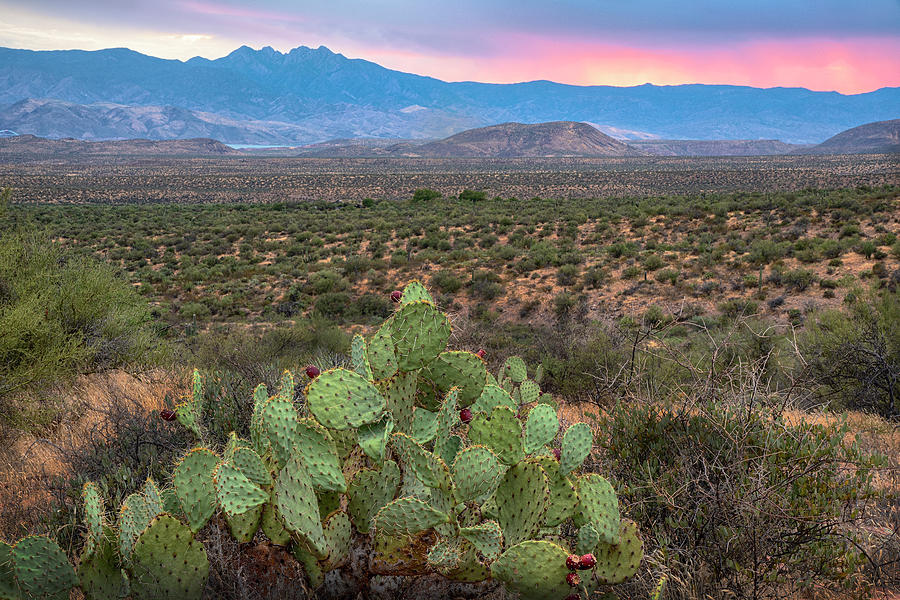 Four Peaks Sunset Ribbon by Dave Dilli