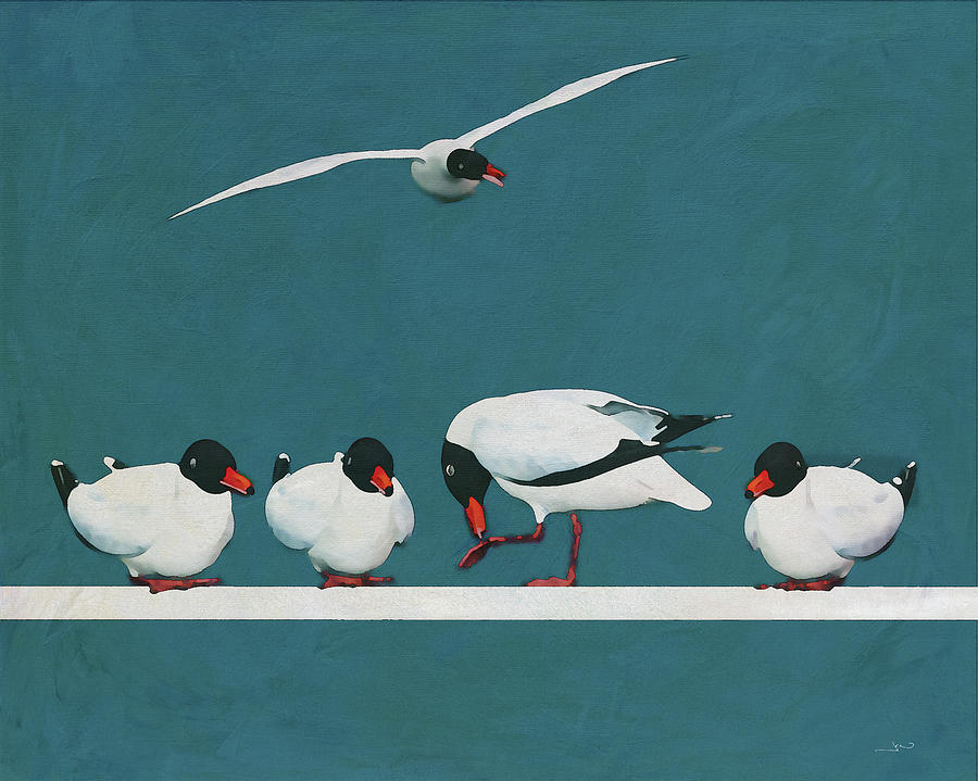 Four Seagulls at rest and one flying by Jan Keteleer