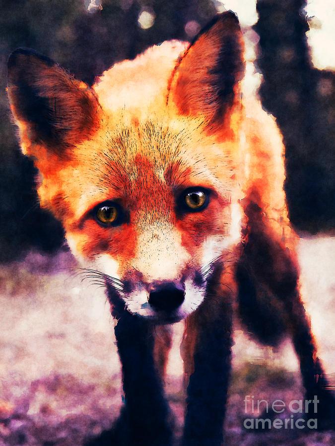Fox Digital Art - Fox by Phil Perkins