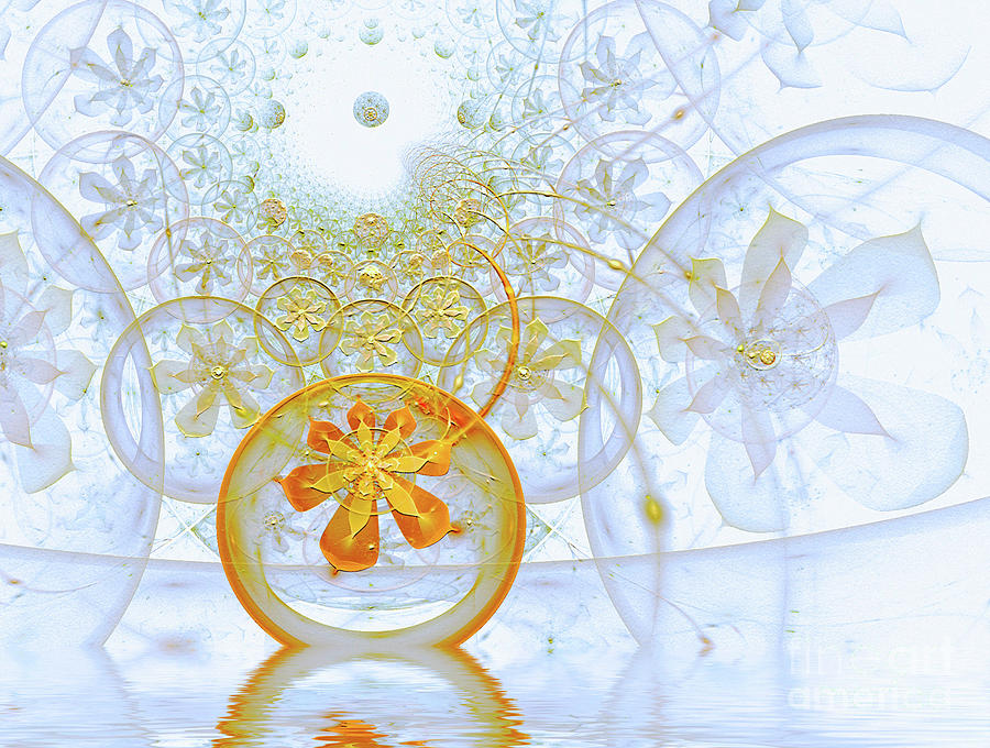 Fractal Abstract  by Elaine Manley
