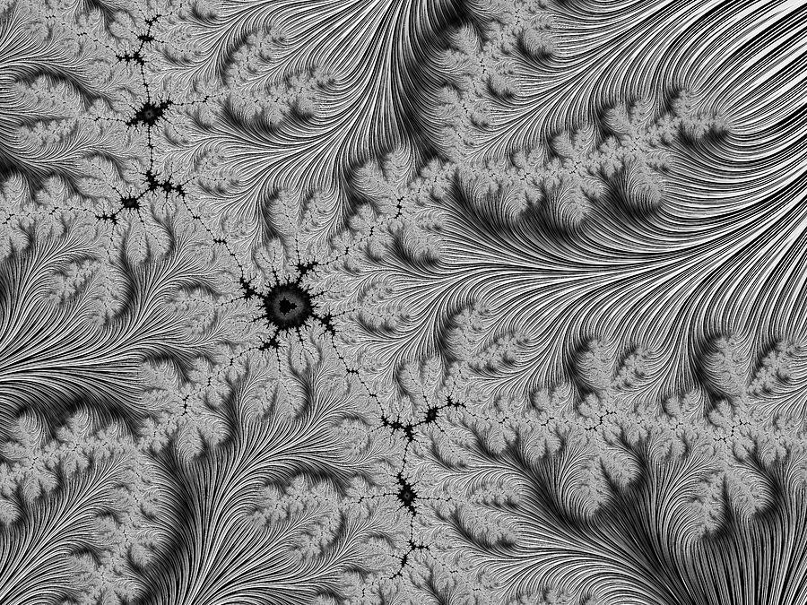 Fractal Silver Veins Digital Art