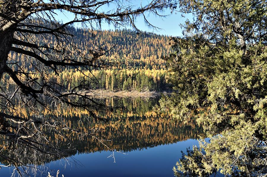 Framed Reflections by Mike Helland