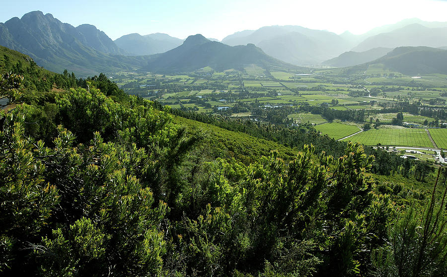 Franschhoek Valley Photograph by Ruvanboshoff
