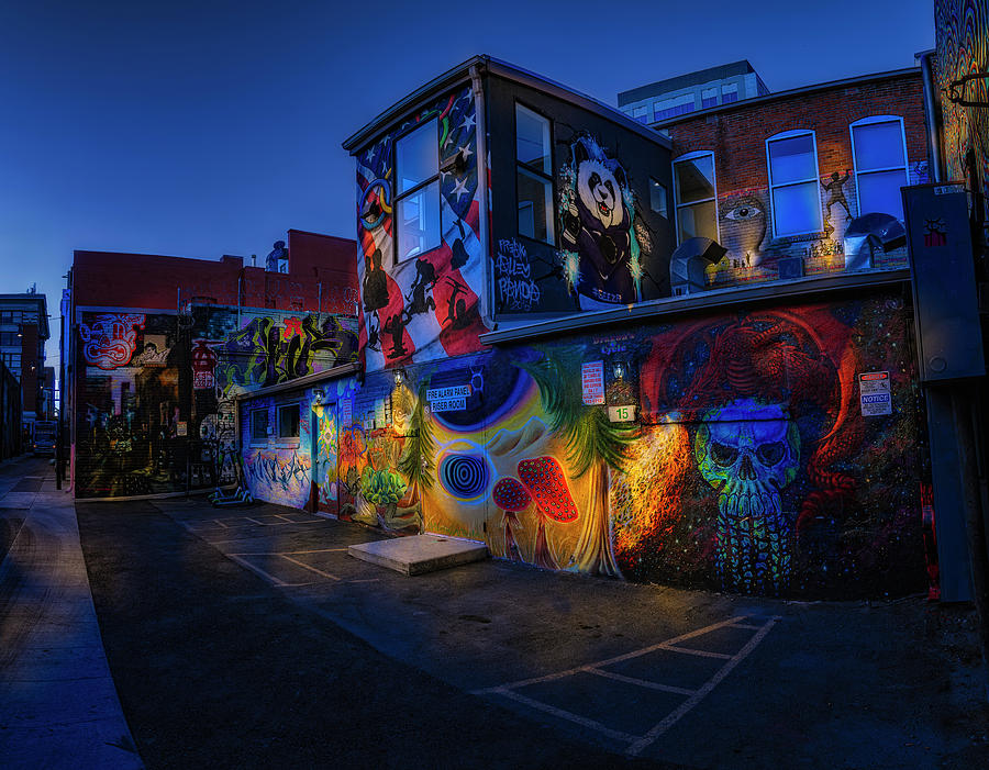 Freak Alley Boise Idaho by Michael Ash