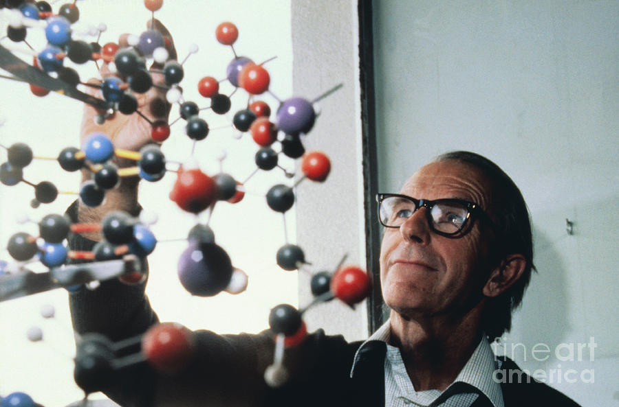 Frederick Sanger And Dna Model Photograph by Bettmann