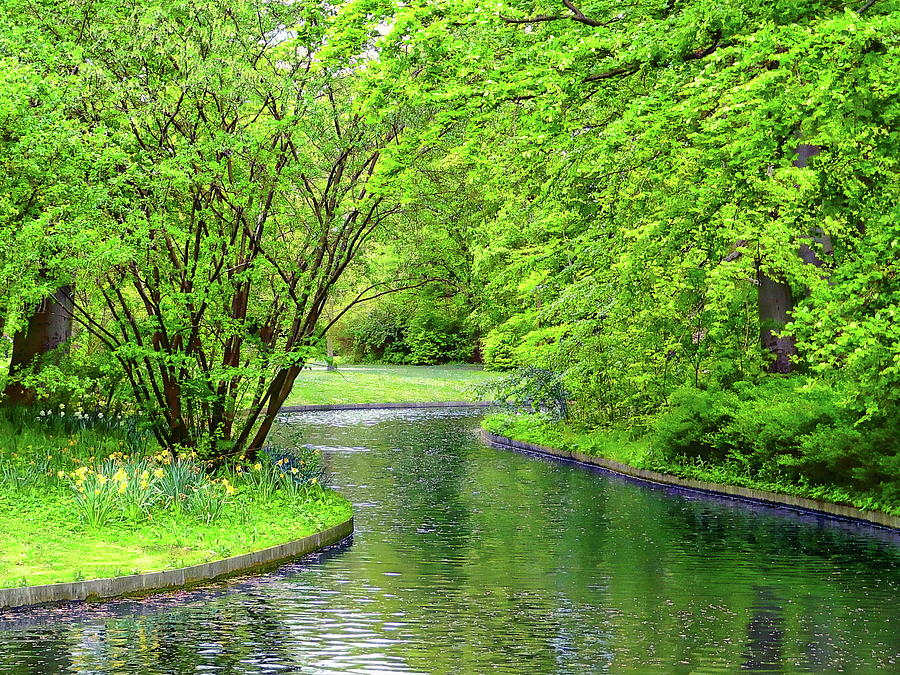 Frederiksberg Gardens by Anthony Dezenzio