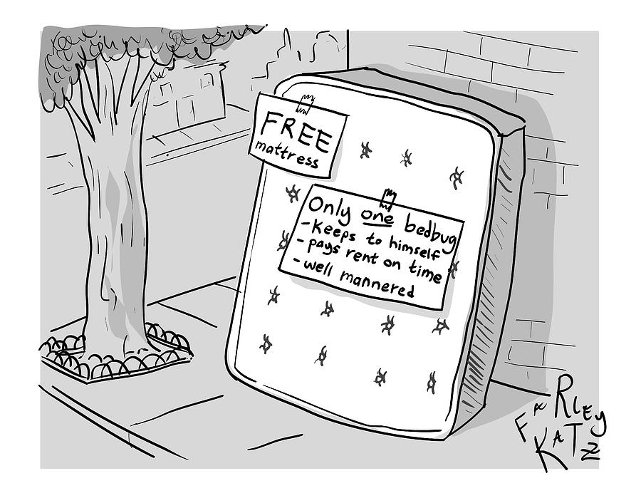 Free Mattress Only One Bedbug Drawing by Farley Katz