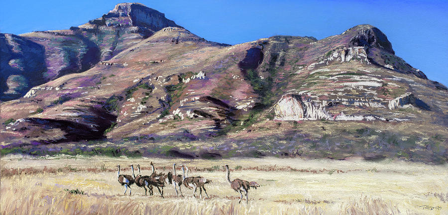 Free State Flock by Christopher Reid