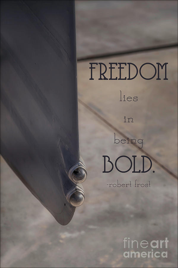 Freedom is Bold by Natural Abstract Photography