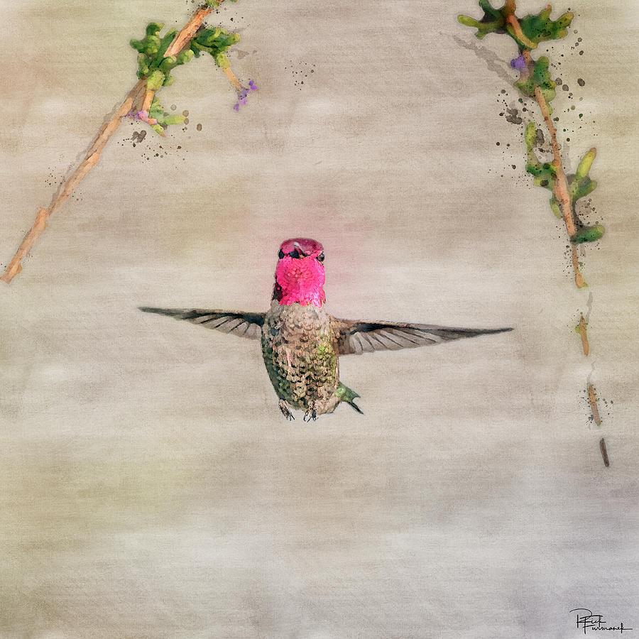 Freeze Frame in Digital Watercolor by Rick Furmanek