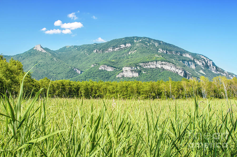 French mountain in Rhone-Alpes scenic in marsh swamp with field by Gregory DUBUS