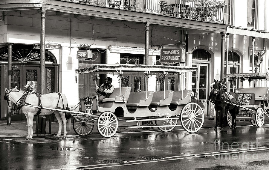 Carriage Photograph - French Quarter Carriage New Orleans by John Rizzuto