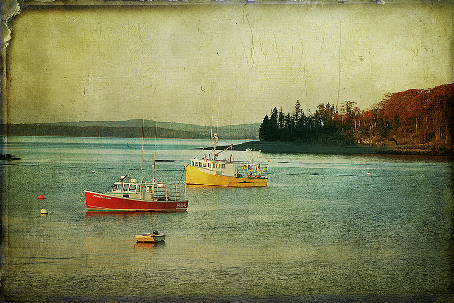 Frenchmens Bay by Cindi Ressler