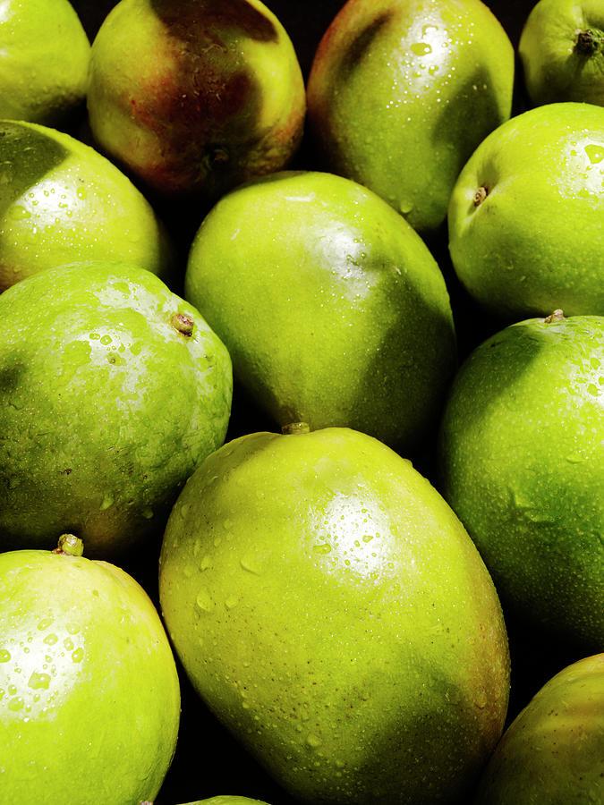 Fresh Mangos Photograph by Stilllifephotographer