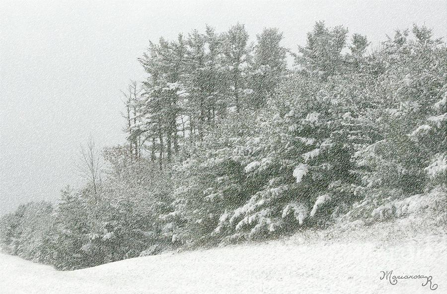 Fresh Snow by Mariarosa Rockefeller