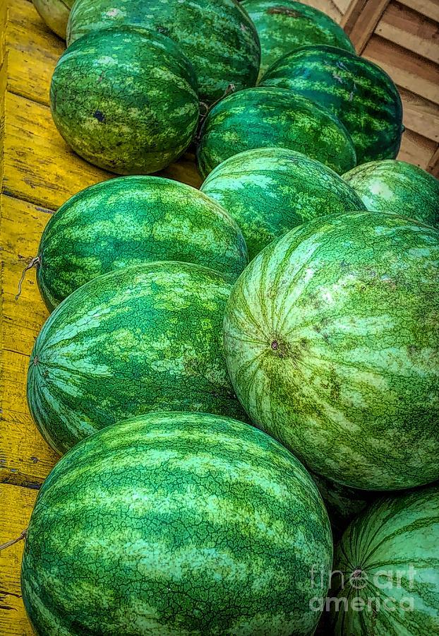Fresh Watermelons by Paulette Thomas