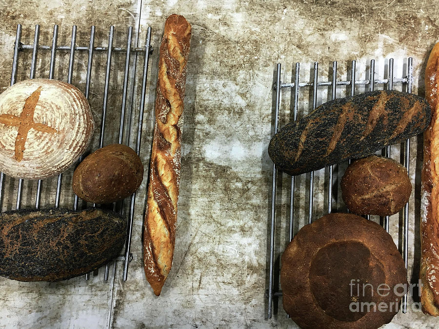 Baguette Photograph - Freshly Baked Artisan Bread by Tom Gowanlock