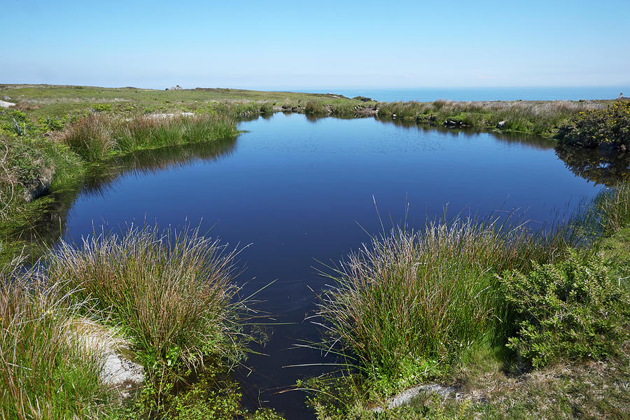 Freshwater Pool On Lundy Island Photograph by Allan Baxter