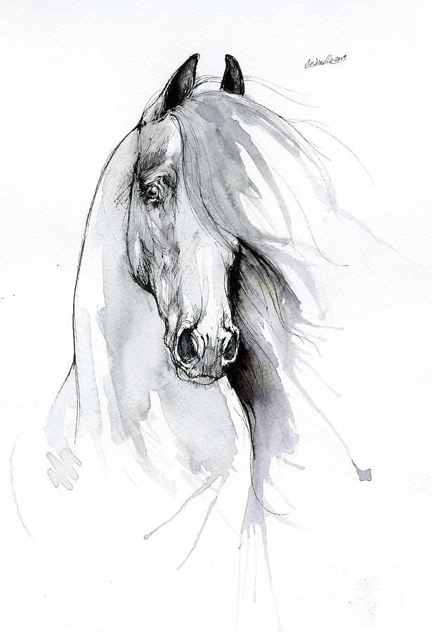 Friesian horse 2019 09 06 by Angel Ciesniarska